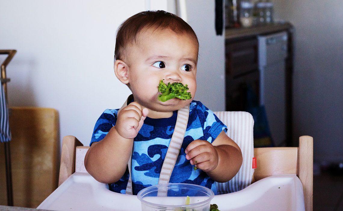 Introducción de sólidos en la dieta de tu bebé - Aserrín Aserrán