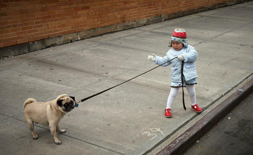 arnés para niños y correa para niños